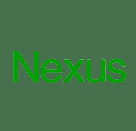 Riparazioni Nexus