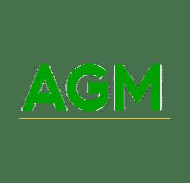 Riparazioni AGM